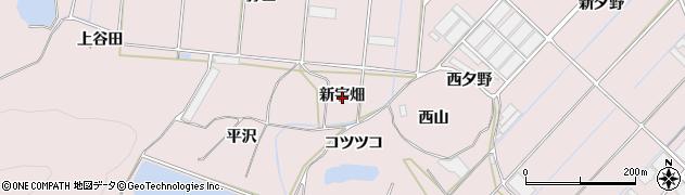 愛知県田原市野田町(新宇畑)周辺の地図