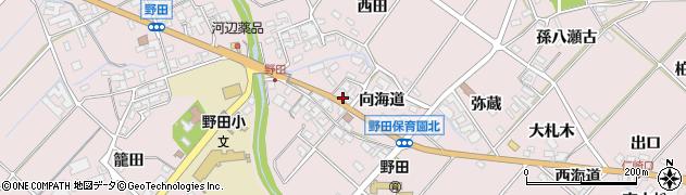 愛知県田原市野田町(向海道)周辺の地図