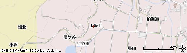 愛知県田原市野田町(上矢毛)周辺の地図