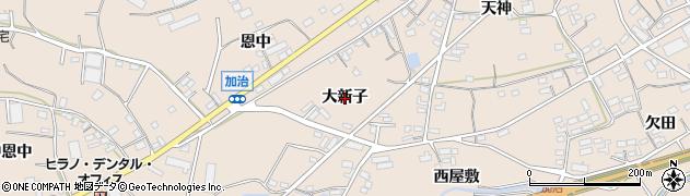 愛知県田原市加治町(大新子)周辺の地図