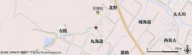 愛知県田原市野田町(丸海道)周辺の地図
