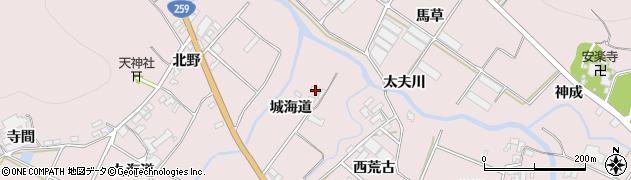 愛知県田原市野田町(城海道)周辺の地図