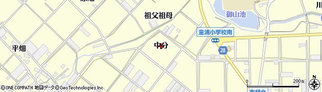 愛知県田原市浦町(中分)周辺の地図