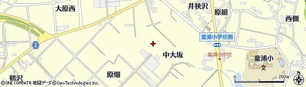 愛知県田原市浦町(中大坂)周辺の地図