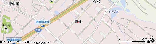 愛知県豊橋市老津町(道林)周辺の地図