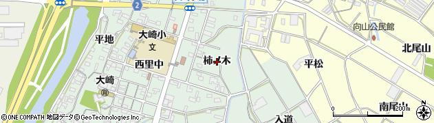 愛知県豊橋市大崎町(柿ノ木)周辺の地図