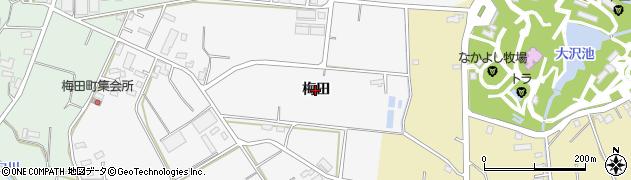 愛知県豊橋市天伯町(梅田)周辺の地図