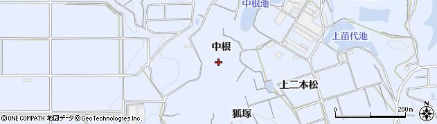 愛知県南知多町(知多郡)大井(中根)周辺の地図