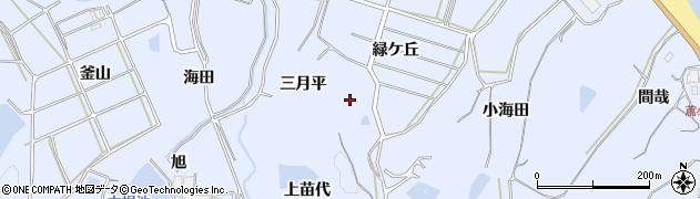 愛知県南知多町(知多郡)大井(梨ノ木)周辺の地図