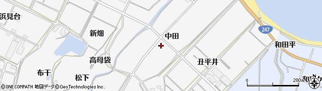 愛知県南知多町(知多郡)豊丘(中田)周辺の地図