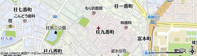 愛知県豊橋市柱九番町周辺の地図