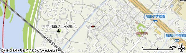 兵庫県加古川市加古川町(稲屋)周辺の地図