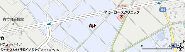 愛知県豊橋市高洲町(森下)周辺の地図