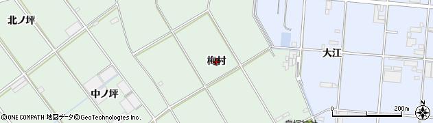 愛知県豊橋市富久縞町(梅村)周辺の地図