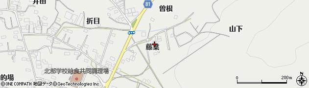 愛知県豊橋市石巻本町(藤葉)周辺の地図