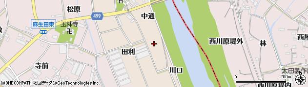 愛知県豊川市向河原町(中通)周辺の地図