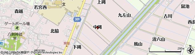 愛知県西尾市巨海町(中縄)周辺の地図