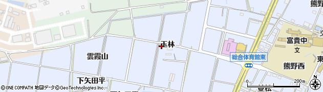 愛知県武豊町(知多郡)東大高(玉林)周辺の地図