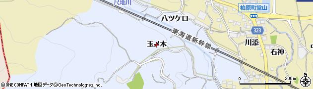 愛知県蒲郡市竹谷町(玉ノ木)周辺の地図