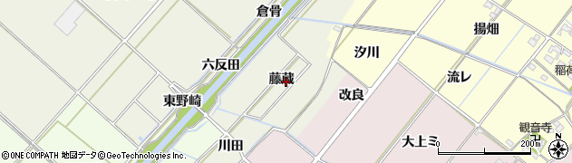 愛知県西尾市下矢田町(藤蔵)周辺の地図