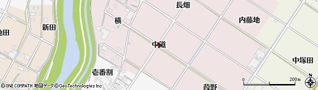 愛知県西尾市和気町(中道)周辺の地図