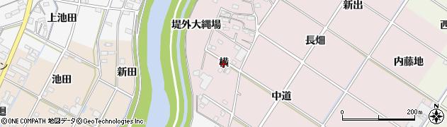 愛知県西尾市和気町(横)周辺の地図