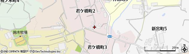 愛知県半田市君ケ橋町周辺の地図