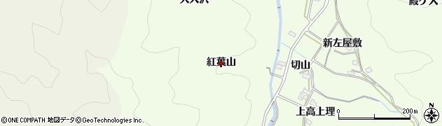 愛知県岡崎市山綱町(紅葉山)周辺の地図