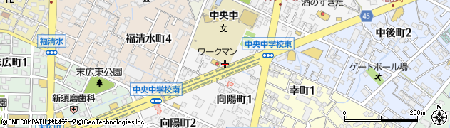 有限会社丸晶周辺の地図