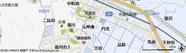愛知県岡崎市市場町元神山周辺の地図