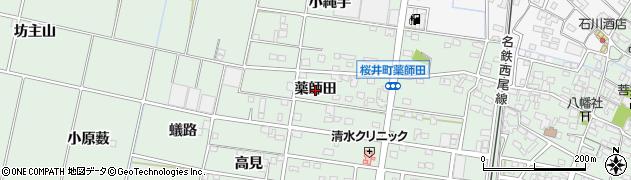 愛知県安城市桜井町(薬師田)周辺の地図