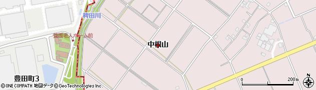 愛知県安城市高棚町(中根山)周辺の地図