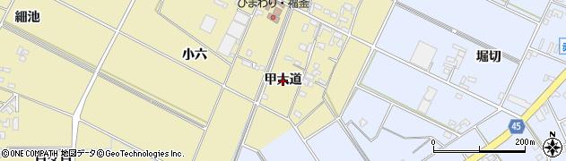 愛知県安城市福釜町(甲大道)周辺の地図