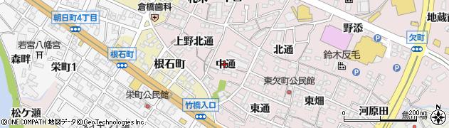 愛知県岡崎市欠町(中通)周辺の地図
