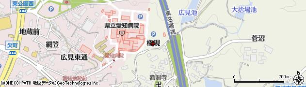 愛知県岡崎市洞町(権現)周辺の地図