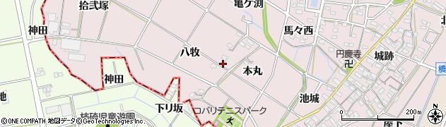 愛知県岡崎市小針町(本丸)周辺の地図