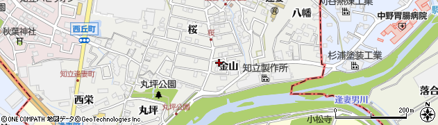 愛知県知立市逢妻町(金山)周辺の地図