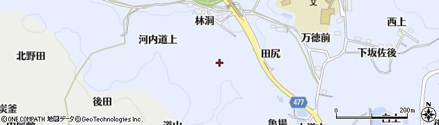 愛知県豊田市下山田代町(林洞)周辺の地図