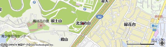 愛知県名古屋市緑区大高町(北忠治山)周辺の地図