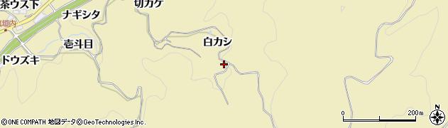 愛知県豊田市坂上町(白カシ)周辺の地図
