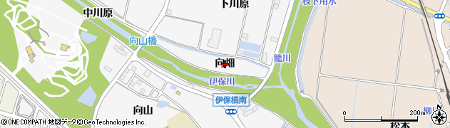 愛知県豊田市伊保町(向畑)周辺の地図
