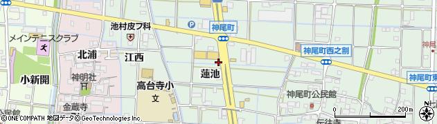 愛知県津島市神尾町(蓮池)周辺の地図