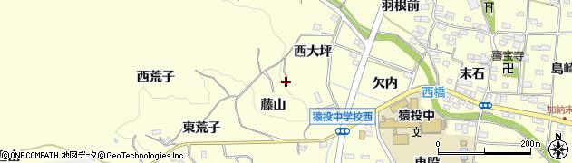 愛知県豊田市加納町(西大坪)周辺の地図