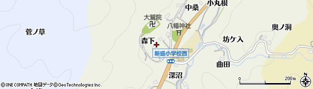 愛知県豊田市新盛町(森下)周辺の地図