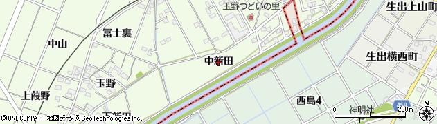 愛知県一宮市玉野(中新田)周辺の地図