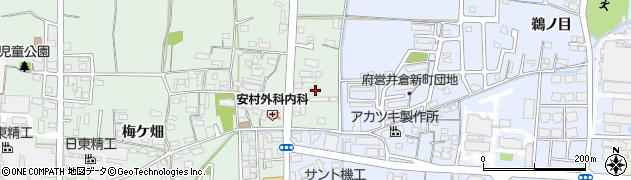 京都府綾部市井倉町(東)周辺の地図