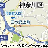 神奈川県横浜市神奈川区三ツ沢上町7