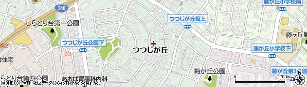 神奈川県横浜市青葉区つつじが丘周辺の地図