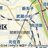 神奈川県川崎市中原区新丸子東3丁目1302