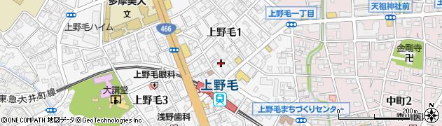 東京都世田谷区上野毛周辺の地図